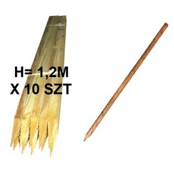 Paliki Słupki Drewniane H-120 cm