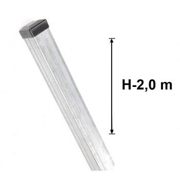 Słupek Ogrodzeniowy 50x50 mm Ocynkowany, Wys.200 cm